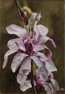 71Pink MagnoliaMiniature18x12