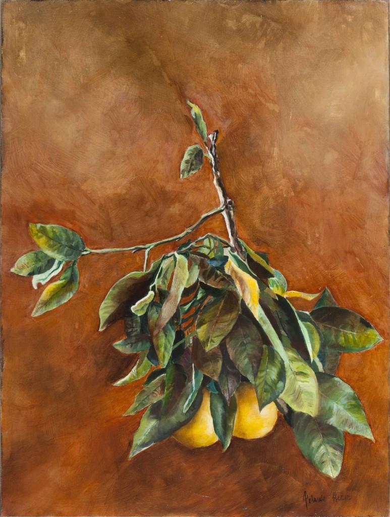 88Grapefruit
